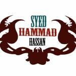 Syed Hammad Hassan
